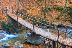 Wooden bridge on a autumn river Royalty Free Stock Images