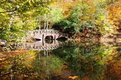 Wooden bridge and autumn trees on lake Stock Photo