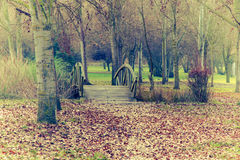 Wooden bridge in autumnal park Stock Photography