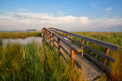 Wooden bridge for bicycles through river Royalty Free Stock Photography