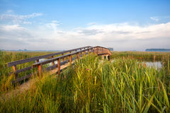 Wooden bridge for bikes in the morning Stock Photos
