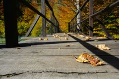 Autumn wooden bridge. Wooden bridge in bright, sunny autumn day with some fallen leaves, low level shot with copy space royalty free stock image