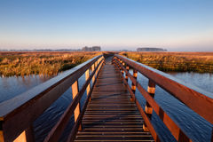 Wooden bridge through canal Royalty Free Stock Photography