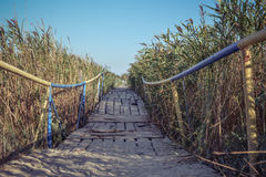 Wooden bridge in canes. Painted blue and yellow colors of the flag of Ukraine Stock Image