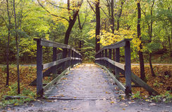 Wooden bridge in colourful autumn forest. Stock Image