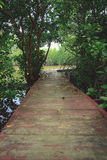 Wooden bridge in the countryside near the river. Stock Photos