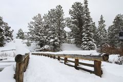 Wooden bridge covered in snow Stock Images
