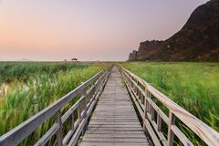 Wooden bridge cross around marsh in sunset time at Sam Roi Yot National Park,Thailand Royalty Free Stock Images