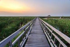 Wooden bridge cross around marsh in sunset time at Sam Roi Yot National Park,Thailand Stock Photo