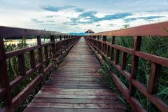 Wooden bridge cross around marsh in sunset time at Sam Roi Yot National Park,Thailand Royalty Free Stock Photography