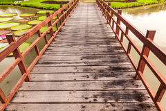 Wooden bridge cross lake Stock Photo