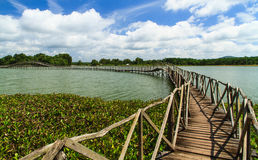 Wooden bridge cross reservoir Stock Photography