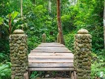 Wooden bridge cross the river in the forest. Ramkhamhaeng National Park,Sukhothai province Thailand stock image