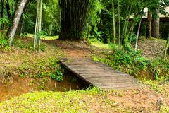 Wooden bridge crossing the Brook at Si Dit waterfall. royalty free stock photography