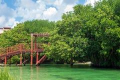 Wooden bridge crossing emerald green river royalty free stock image