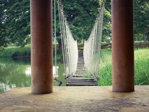 Wooden bridge crossing the swamp royalty free stock photography