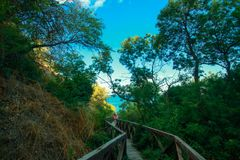 Wooden bridge-descent in a mountain park on the way to the beach at sea.  royalty free stock image