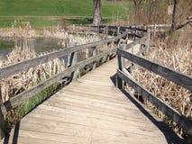 Wooden bridge ends in near an open field. Wooden bridge ends at a big tree near a green field Royalty Free Stock Image