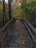 A wooden bridge in fall Royalty Free Stock Photo