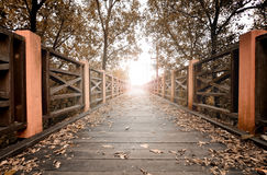 Wooden bridge and falling leaves with sunlight beam Royalty Free Stock Photos