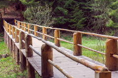 Wooden bridge fenced by a fence in a pine forest Stock Photography