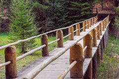 Wooden bridge fenced by a fence in a pine forest Stock Photos
