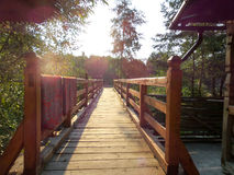 Wooden bridge on first sunrays at morning Royalty Free Stock Photography