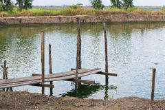 Wooden bridge in fish farm pool. Royalty Free Stock Photography