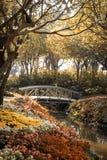 Wooden bridge in flower garden on morning sun light sepia color Stock Photos
