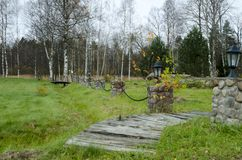 Circled trees in the autumn forest stock photography