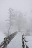 Wooden bridge in the fog Stock Photos