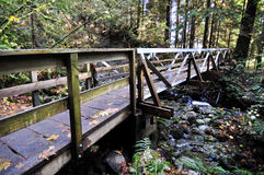 Wooden bridge in the forest Stock Images