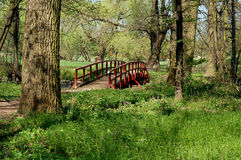 Wooden bridge in the forest. Red wooden bridge across a little river located in the forest Stock Photo