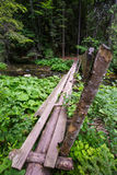Wooden bridge in the forest Stock Photo