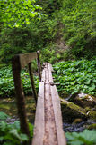 Wooden bridge in the forest Royalty Free Stock Photography