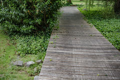 Wooden bridge in a forest along the trekking path Stock Photos