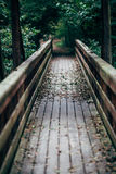 Wooden bridge. In a forest in autumn royalty free stock photography