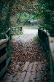 Wooden bridge. In a forest in autumn stock photos