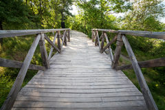 Wooden bridge In forest. Background for design Stock Images
