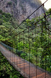 Wooden bridge the forest in Banos de Agua Santa. Ecuador Stock Image