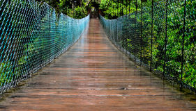 Wooden bridge the forest in Banos de Agua Santa. Ecuador Stock Photo