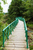 Wooden bridge in forest Stock Image