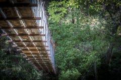 Wooden bridge in forest Stock Photo