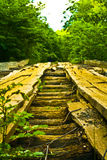 Wooden bridge in forest Stock Photography