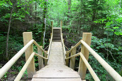 Wooden bridge in the forest. Sigulda. Royalty Free Stock Photos
