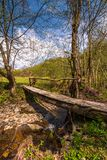Wooden bridge through forest stream. Beautiful nature scenery in springtime Royalty Free Stock Photos
