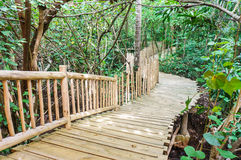 Wooden bridge in garden Royalty Free Stock Photos