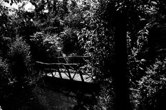 Wooden bridge in the garden. A little sweet brew that bridges over a ditch in the garden. In black and white style Royalty Free Stock Photos