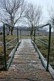 Wooden bridge with green handrail during winter. Wooden bridge with green steel handrail during winter season royalty free stock photo