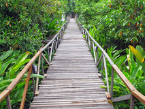 Wooden bridge Royalty Free Stock Images
